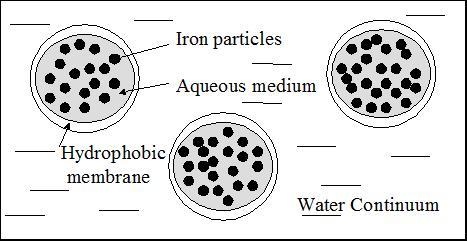 Emulsified Zero Valent Iron Droplets Graphic